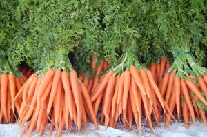 Memory: An Extra Benefit of Vitamin C and Beta-Carotene