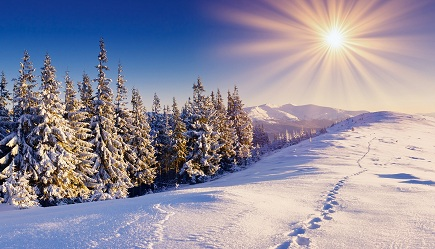 Sun in the Winter