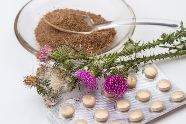 Silybum (milk thistle) is a genus of two species of thistles in the (daisy family).