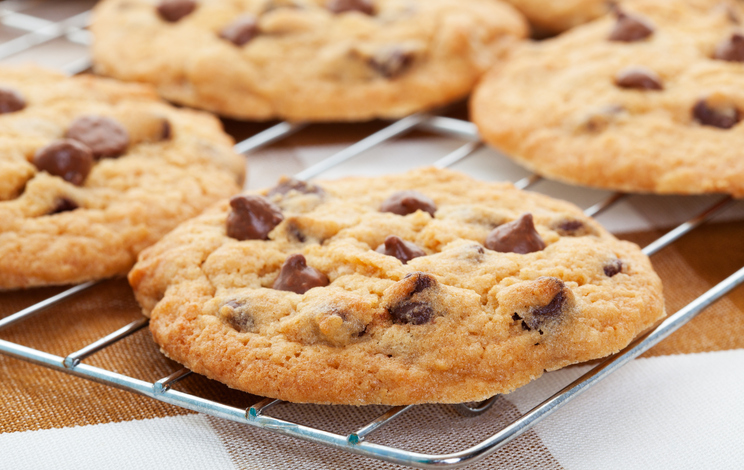 """""""Warm, golden brown, chocolate chip cookies cooling on a rack. Shallow depth of field."""""""